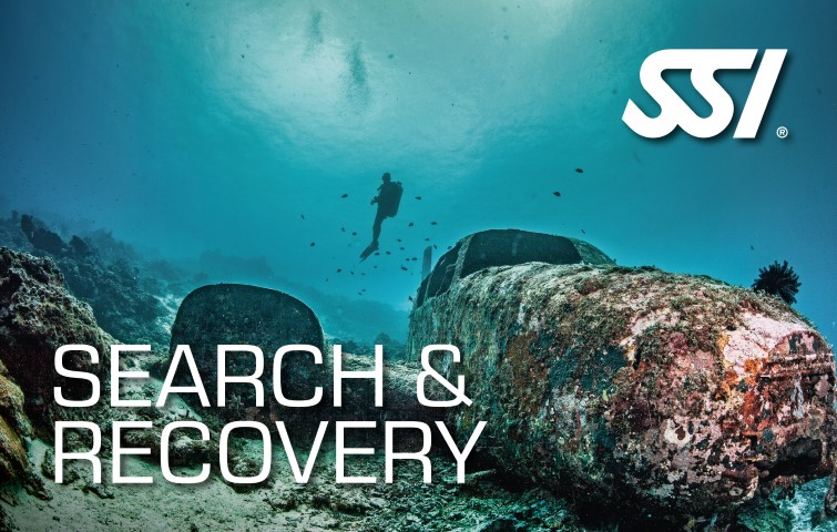 Search & Recovery 2