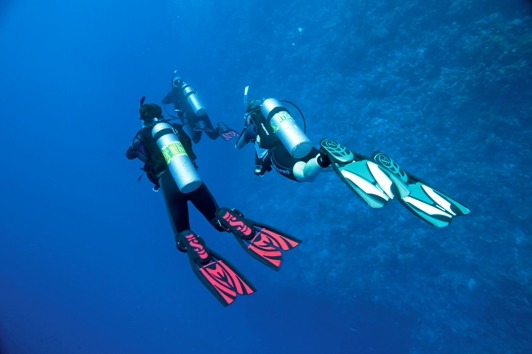Six Dives (in 3 days)